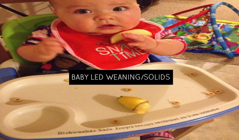 What is Baby Led Weaning/Solids?