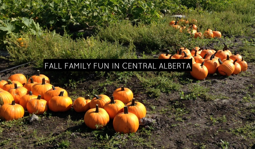 Fall Family Fun in Central Alberta
