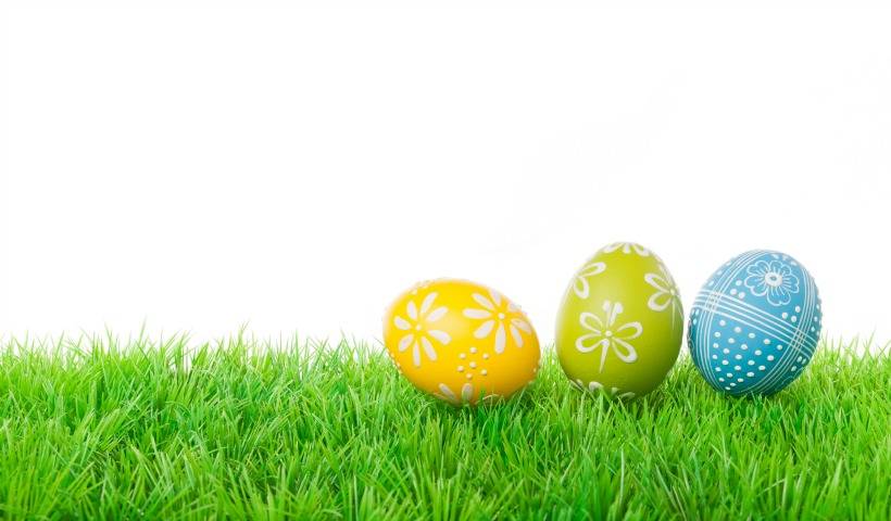 Easter Bunny & Easter Fun In Central Alberta
